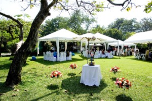 Wedding in the Finger Lakes